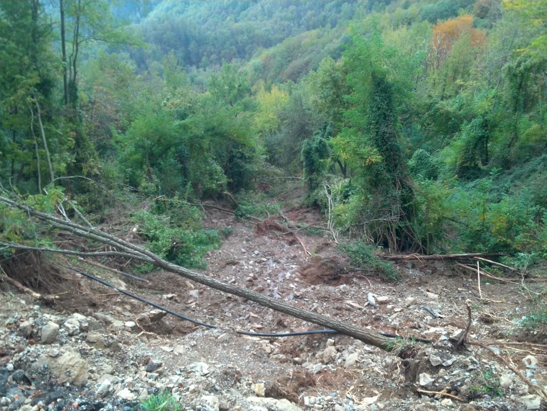 Debris flow - Molazzana (LU)